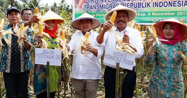 Bupati BU Panen jagung bersama Dirjen